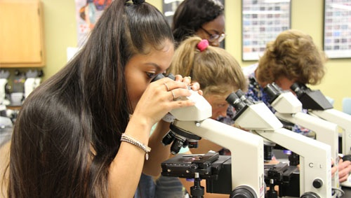 student looking through microscope