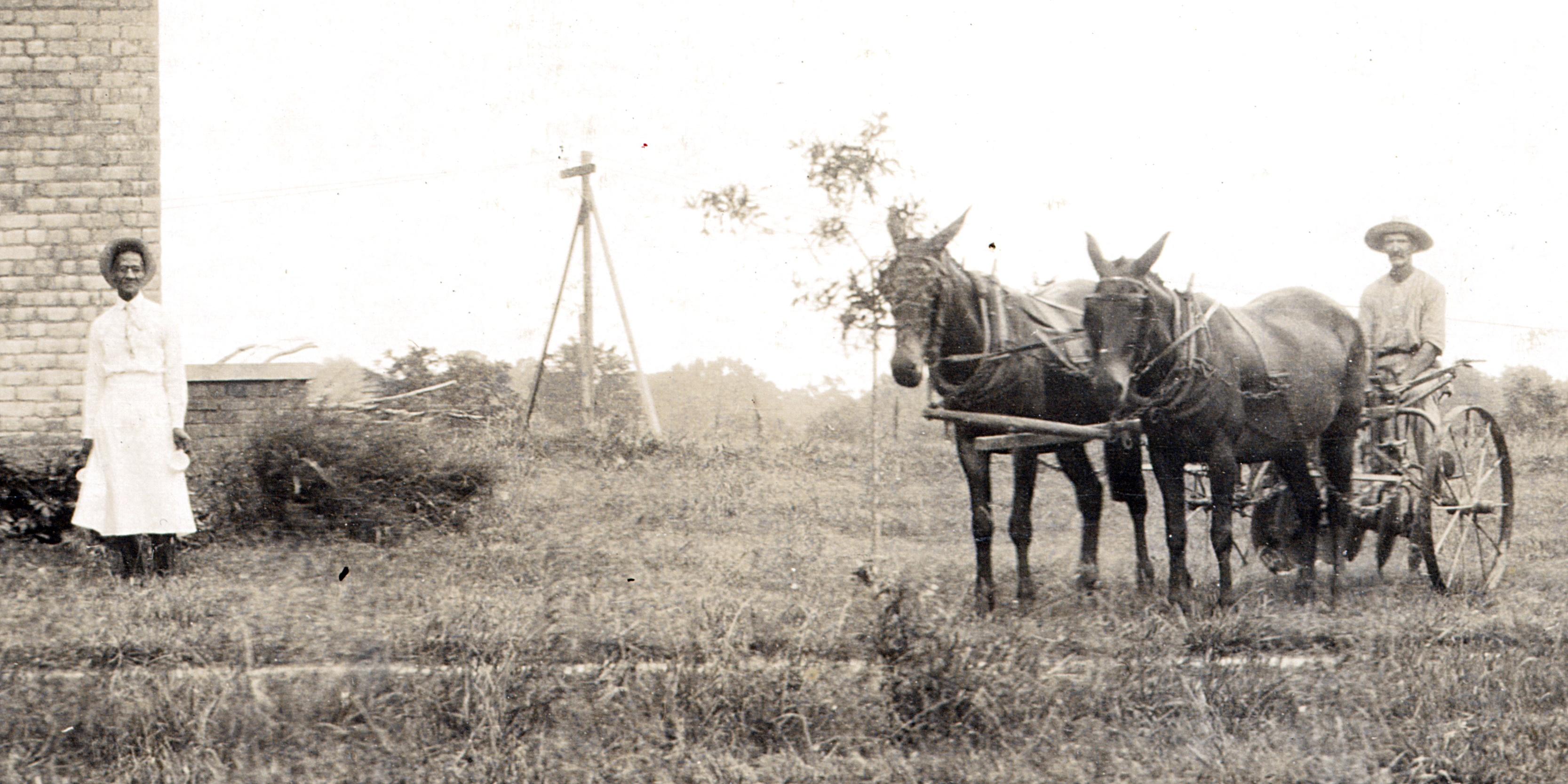woman-mules